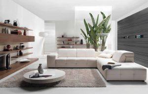 sala minimalista y orgánica